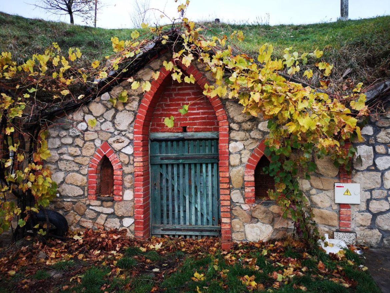 Vrbice winiarnie wino morawy festiwal otwartych piwniczek