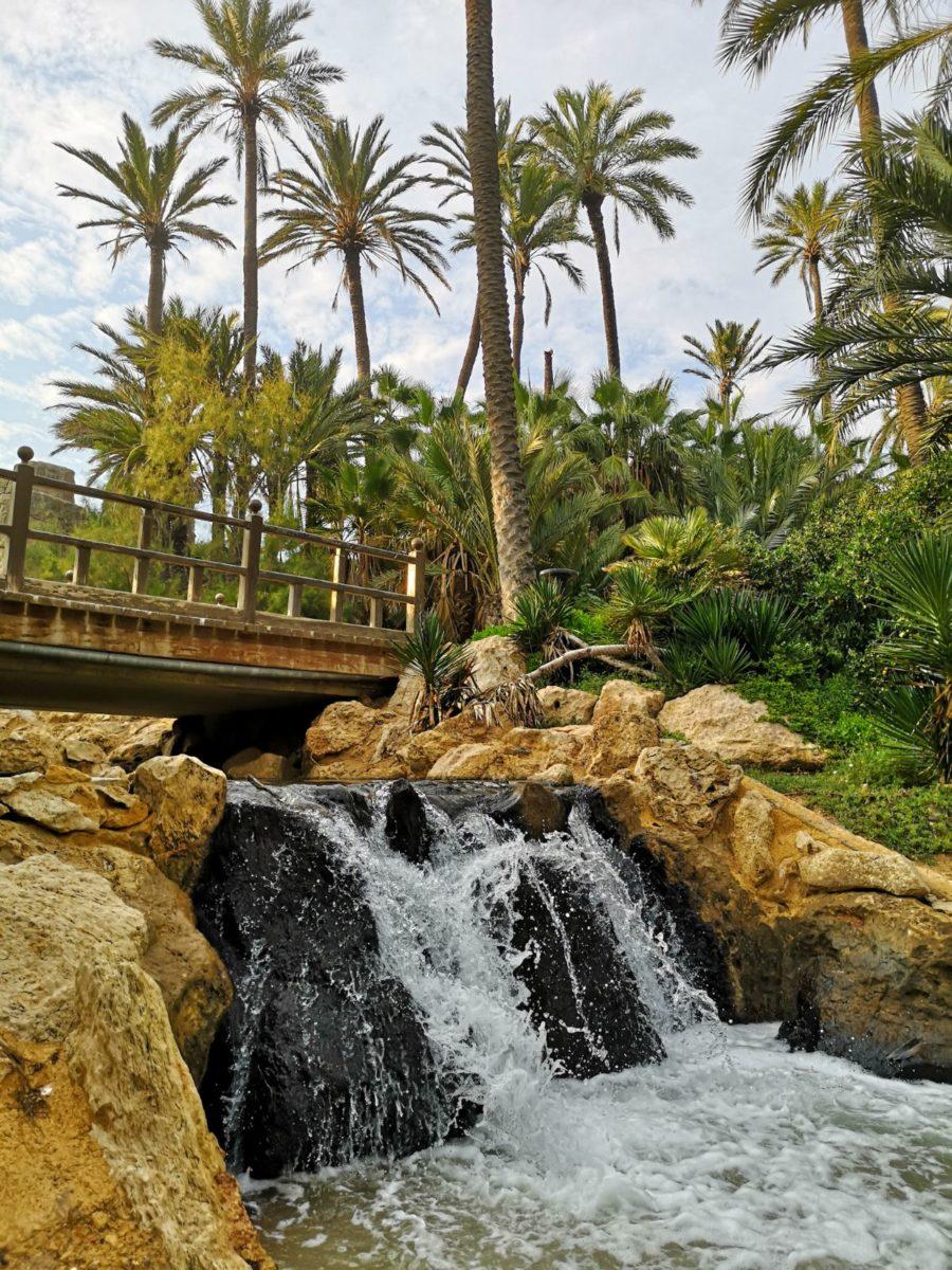co zwiedzić katania el palmeral Park