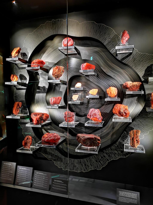 muzeum bursztyny rodzaje zwiedzanie gdańska co zobaczyć w weekend