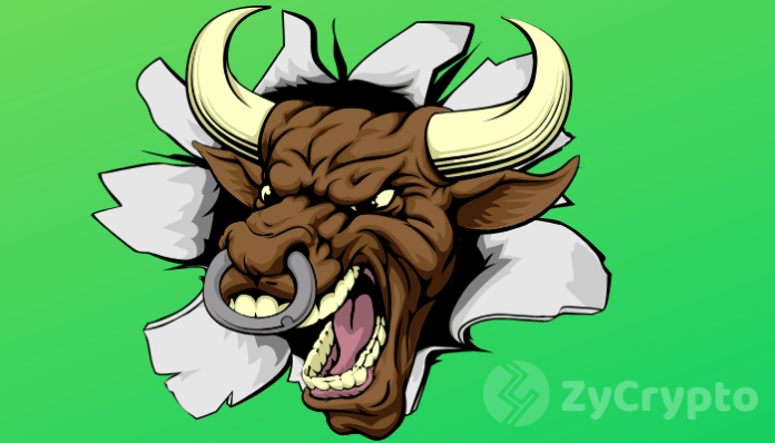 The Next Crypto Bull Run to Generate 1000% Profit: Pantera Capital CIO