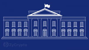 Is Donald Trump a Crypto fan? Blockchain and Crypto advocate elevated to White House Chief of Staff