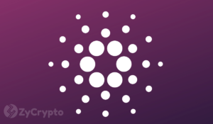 Cardano's ADA Is 'Vastly Superior' to EOS, Says Weiss Ratings