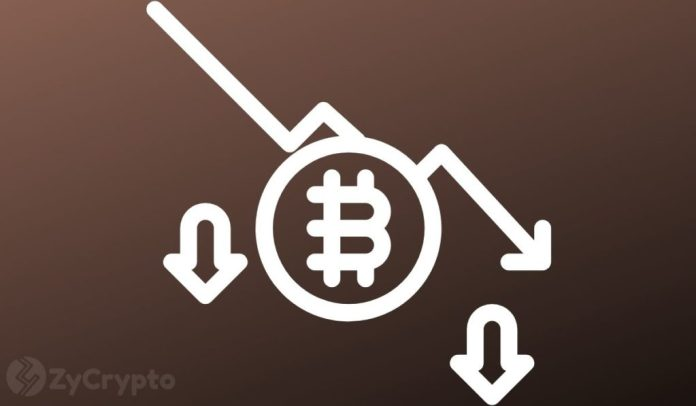 Should You Buy The Bitcoin Dip? Analysts Weigh In On Bear Market