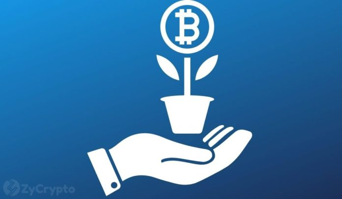Crypto Investment A Major Priority For Nearly Half Of Stimulus Recipients
