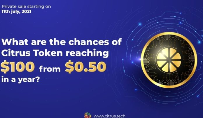 What are the chances of Citrus Token reaching $100 from $0 50 in a year?