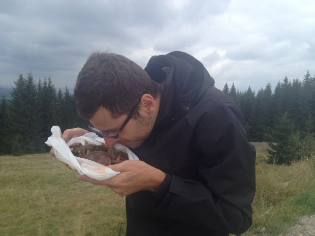 Zapach grzybów