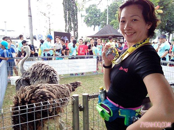 Real live ostriches, here at PJ Half Marathon!