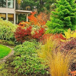 Cheap Front Yard Landscaping Ideas That Will Inspire 43