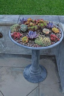 Creative DIY Patio Gardens Ideas On A Budget 22