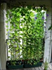 Creative Diy Small Apartment Balcony Garden Ideas 35