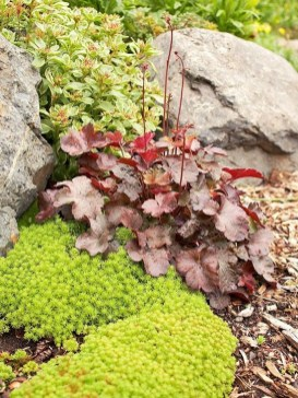 RSimple Rock Garden Decor Ideas For Front And Back Yard 40