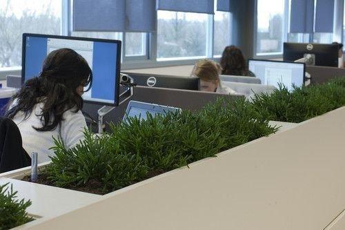 Relaxing Green Office Décor Ideas 37