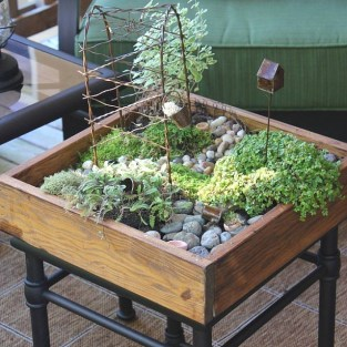 Awesome Succulent Garden Ideas For 2018 29