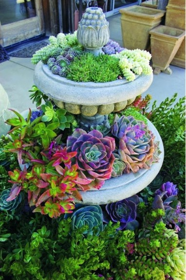Awesome Succulent Garden Ideas For 2018 31