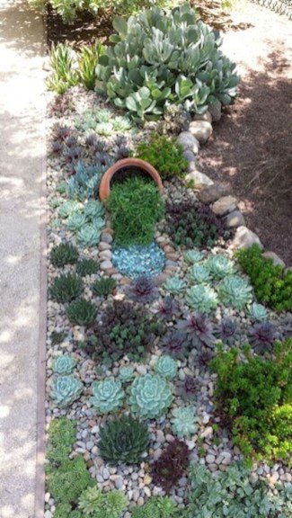 Awesome Succulent Garden Ideas For 2018 32