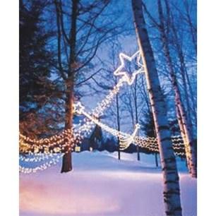 Extraordinary Outdoor Light Christmas Ideas 12