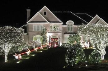 Extraordinary Outdoor Light Christmas Ideas 14