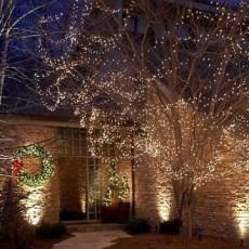Extraordinary Outdoor Light Christmas Ideas 16