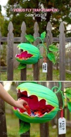 Cozy Diy Halloween Decoration Ideas44