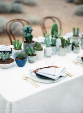 Wonderful Cactus Centerpieces Ideas08