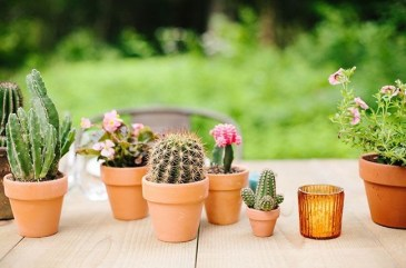 Wonderful Cactus Centerpieces Ideas25