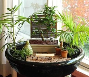 Brilliant Bonsai Plant Design Ideas For Garden28