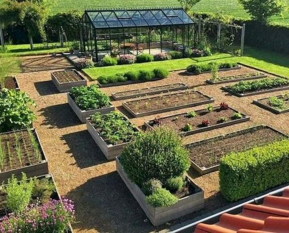 Brilliant Bonsai Plant Design Ideas For Garden38