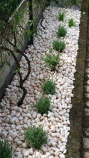 Minimalist Front Yard Landscaping Ideas On A Budget38