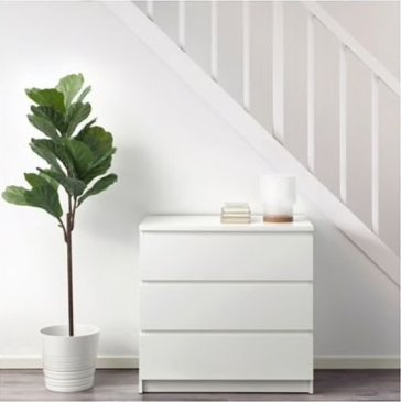 Simple Wall Plants Decorating Ideas06