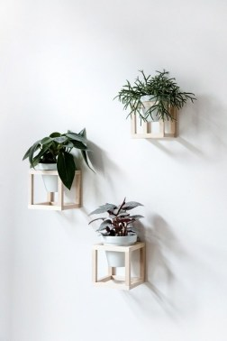 Simple Wall Plants Decorating Ideas34