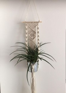 Simple Wall Plants Decorating Ideas43