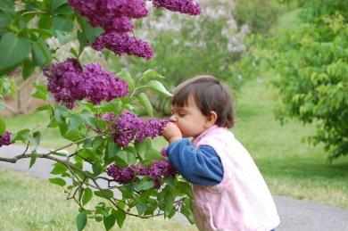 Elegant Play Garden Design Ideas For Kids14