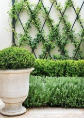 Awesome Small Garden Fence Ideas22