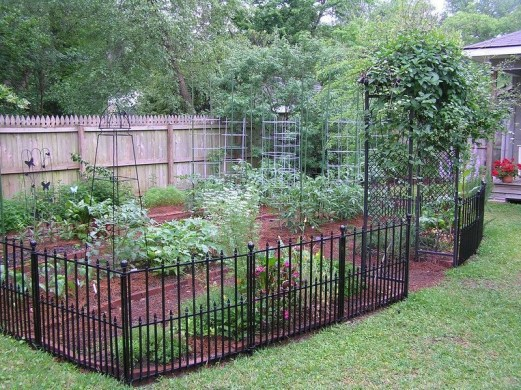 Awesome Small Garden Fence Ideas38