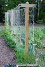 Brilliant Vertical Gardening Ideas45
