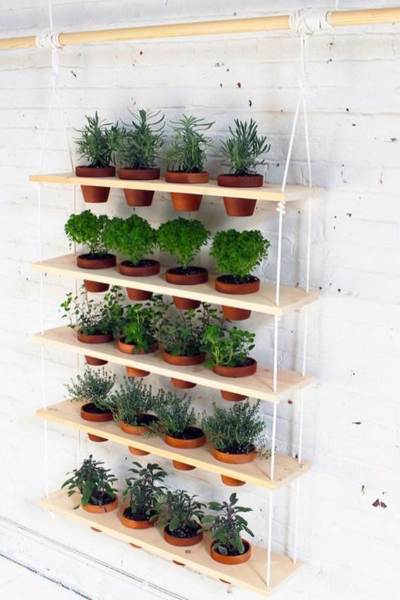 Brilliant Vertical Gardening Ideas47
