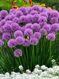 Extraordinary Summer Garden Ideas Just For You 01