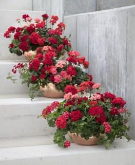 Extraordinary Summer Garden Ideas Just For You 19
