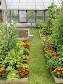 Extraordinary Summer Garden Ideas Just For You 31