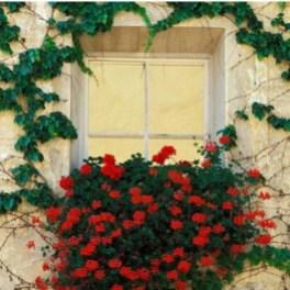Lovely Window Design Ideas With Vase Flower Ornament14