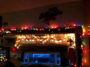 Splendid Christmas Rv Decorations Ideas For Valuable Moment24