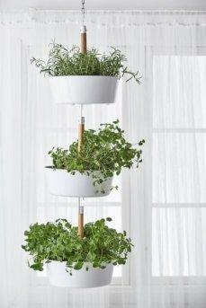 Superb Indoor Garden Designs Ideas For Home45
