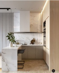 Catchy Apartment Kitchen Design Ideas You Need To Know13