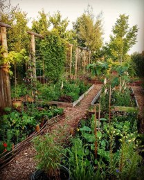 Inspiring Garden Ideas That Are Suitable For Your Home27