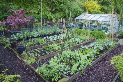 Inspiring Garden Ideas That Are Suitable For Your Home37