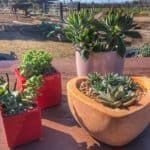 Latest Garden Design Ideas With The Concept Of Valentines Day12