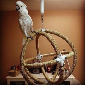 Magnificient Stand Bird House Ideas For Garden46