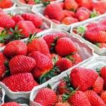Co wiemy <br> o truskawkach?