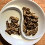 Owady i ich przetwory<br> w produktach żywnościowych<br> i paszach