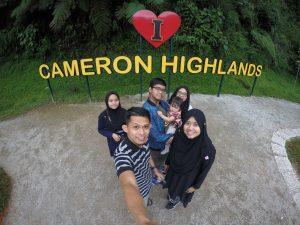 8 Tempat Menarik di Cameron Highlands
